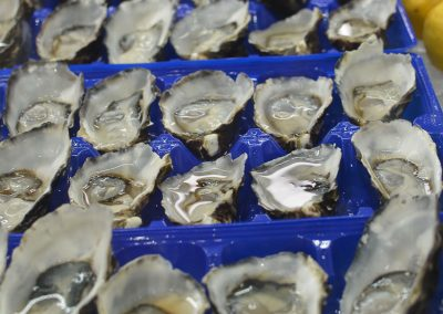 oysters at Lilydale Fish Market
